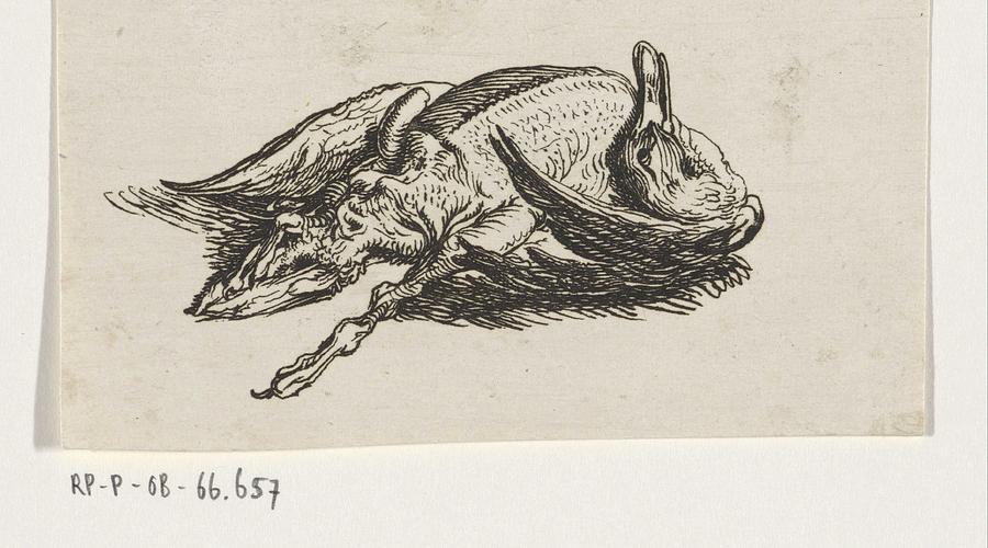 Duck Painting - Dead Duck, Jacob Elias Van Varelen, After Jacob De Gheyn II, 1821 by Jacob de Gheyn