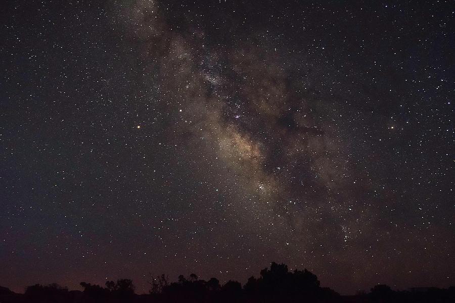Dead Horse Milky Way by Linda Steele