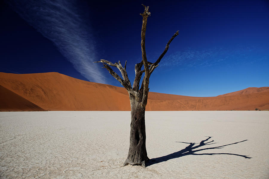 Landscape Photograph - Deadvlei by Sander Hunter