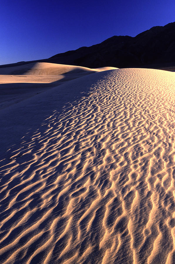California Photograph - Death Valley Dune by Eric Foltz