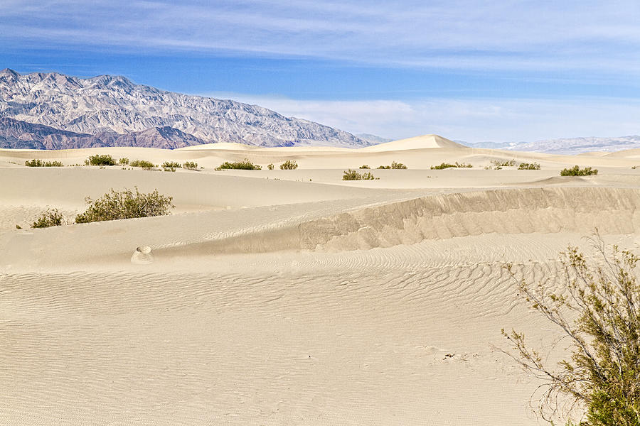 Death Valley Sand Dunes 1 by Jim Moss