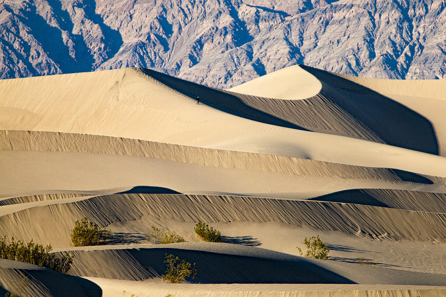 Death Valley Sand Dunes 2 by Jim Moss