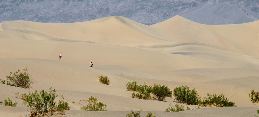 America Photograph - Death Valley Sand Dunes by Andre Distel