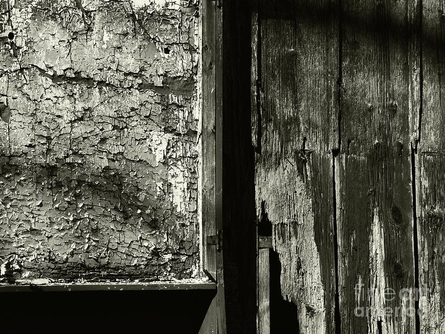 Decay Photograph - Decay by Jeff Breiman