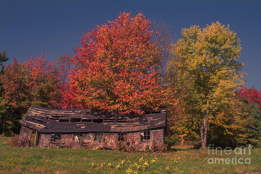Decaying Building by Photography by Laura Lee