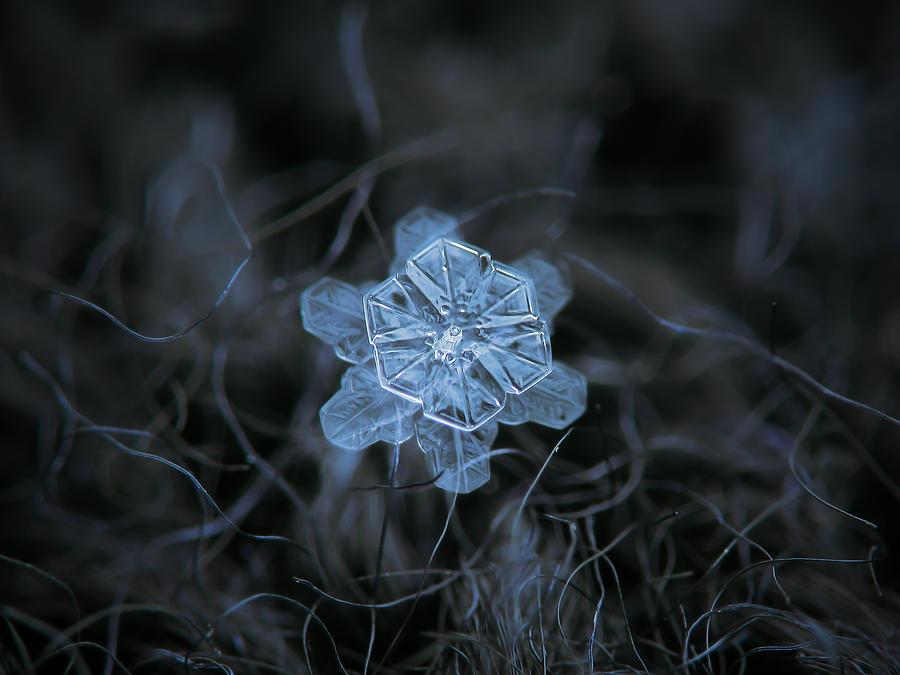 Snowflake Photograph - December 18 2015 - Snowflake 2 by Alexey Kljatov