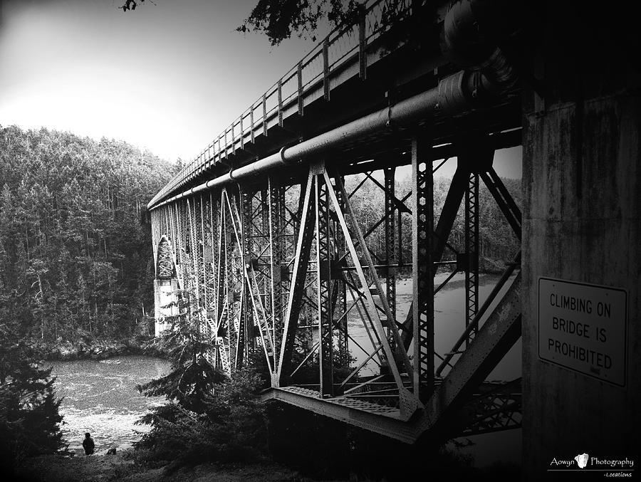 Bridge Photograph - Deception Pass Bridge by Stephanie McGuire
