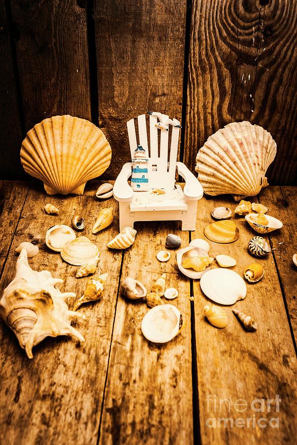 Deckchair Photograph - Deckchairs And Seashells by Jorgo Photography - Wall Art Gallery