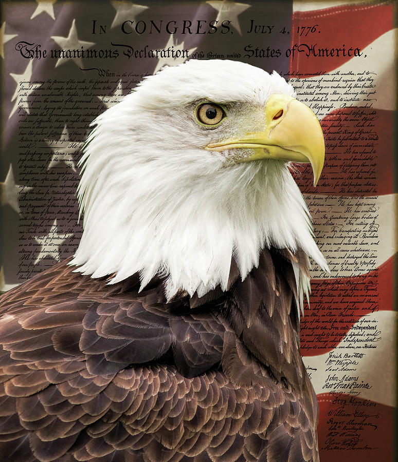 Independence Photograph - Declaration Of Independence by Dale Kincaid