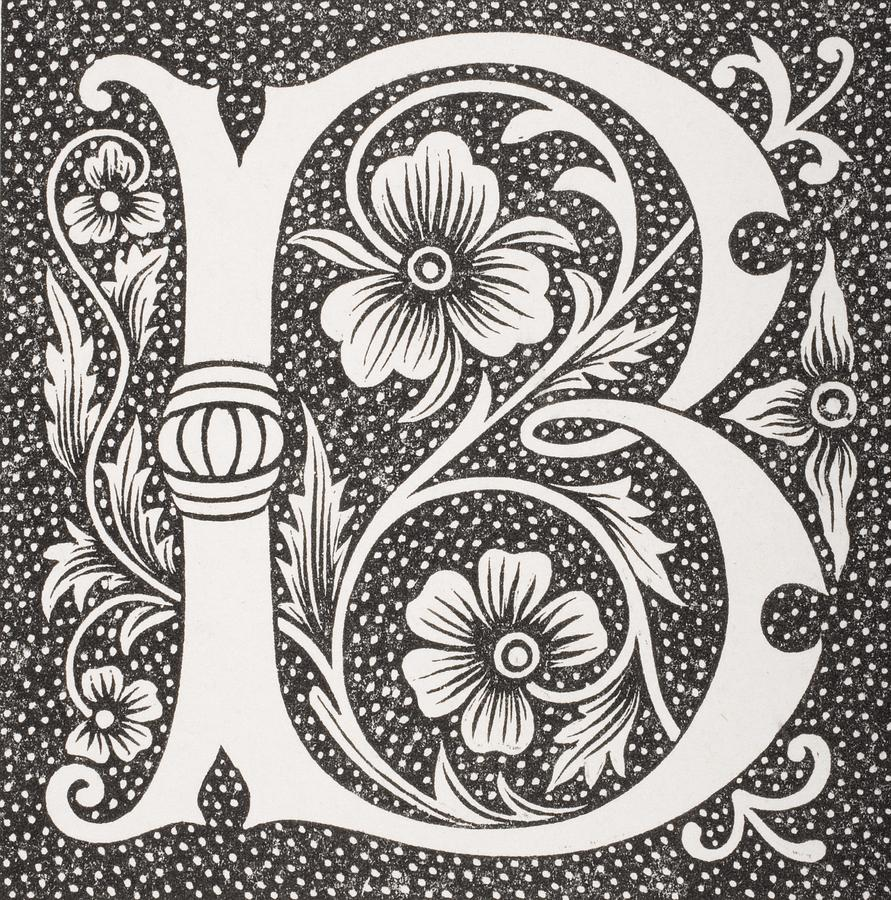 decorative letter b decorative capital letter b drawing by vintage design pics 21329