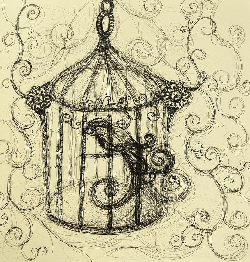 Decorative Swirl Bird Cage Drawing by Melissa Brazeau