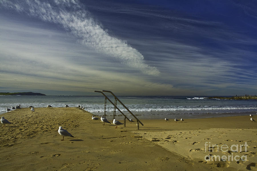 Beach Photograph - Dee Why Beach Sydney by Sheila Smart Fine Art Photography