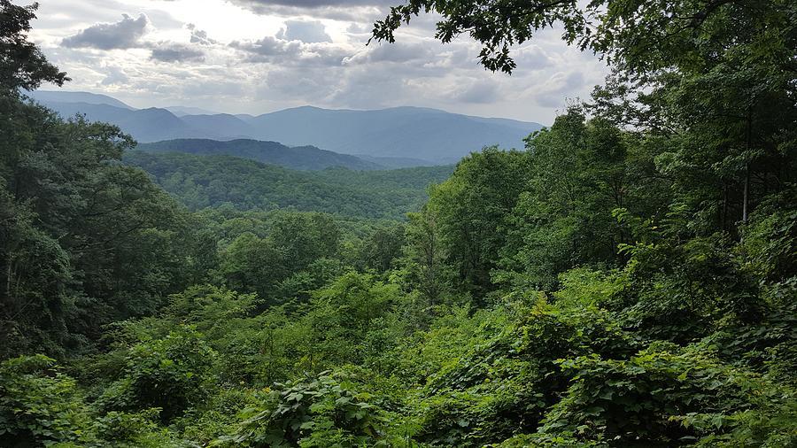Smoky Mountains Photograph - Deep In The Great Smoky Mountains by John Arthur Robinson
