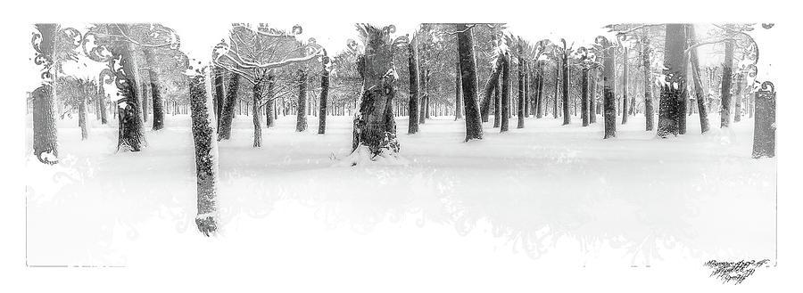 Drottningholm Digital Art - Deep Winter II by Mikael Jenei