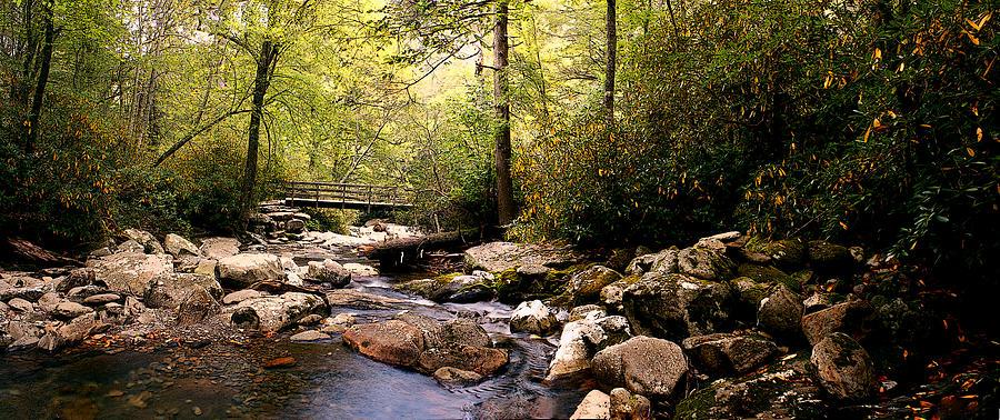 Bridge Photograph - Deepwoods Luxuries by David A Brown