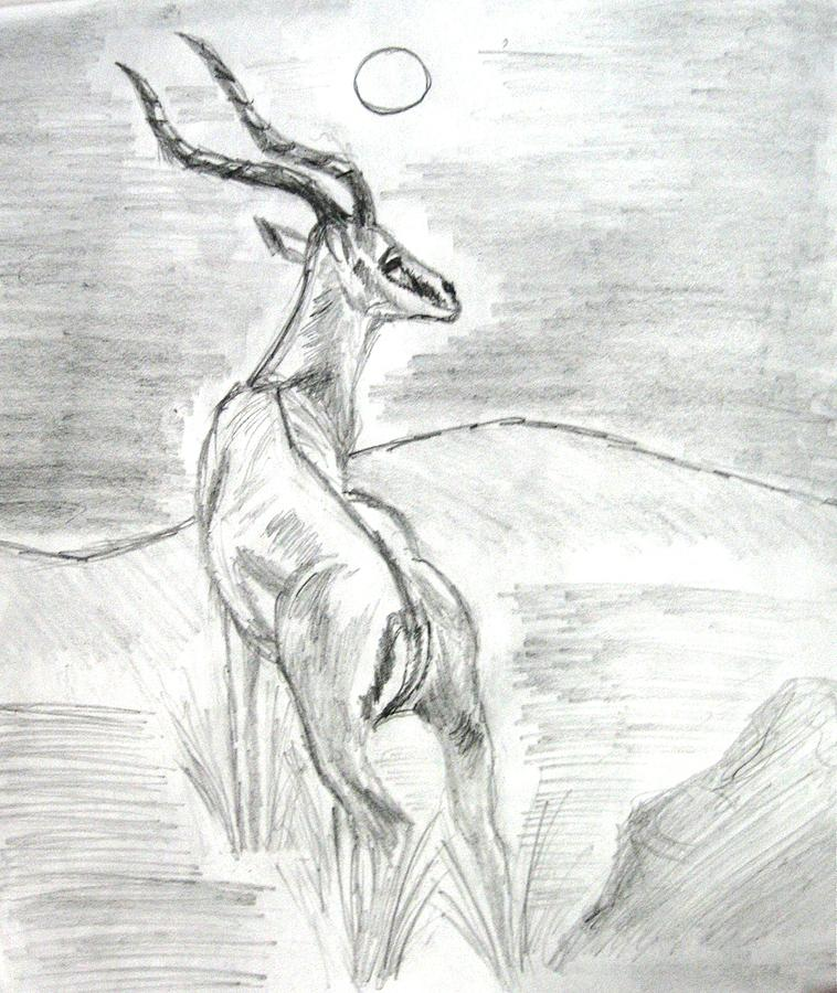 Deer - Impala Painting by Soumyadeep Nag