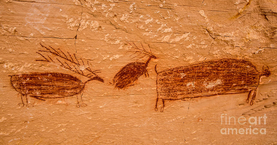 Utah Photograph - Deer And Bison Pictograph - Horseshoe Canyon - Utah by Gary Whitton