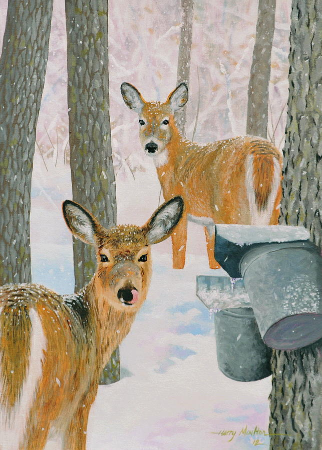 Deer and Sap Buckets by Harry Moulton