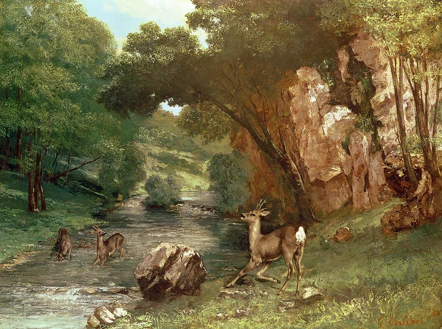 Deer Photograph - Deer By A River by Gustave Courbet
