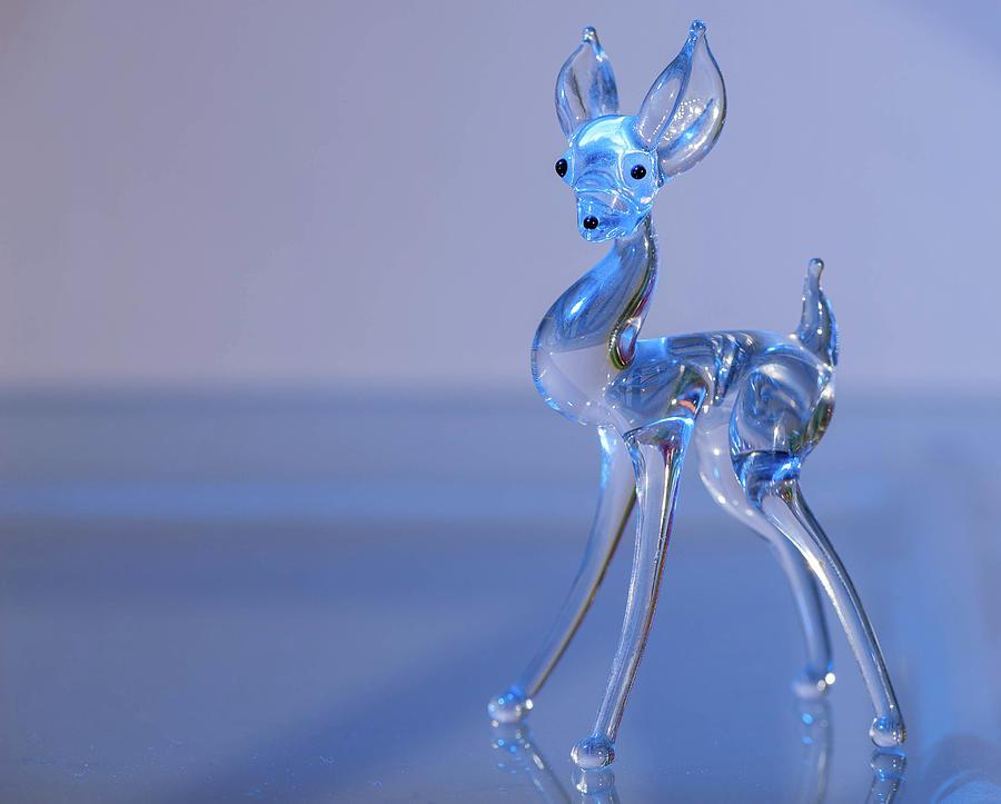 Deer Photograph - Deer Made Of Glass by Stefan Rotter
