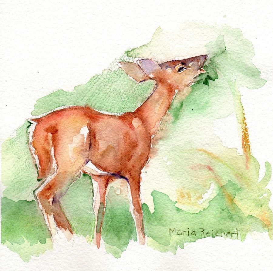 Deer In The Woods Painting - Deer Painting In Watercolor by Maria Reichert