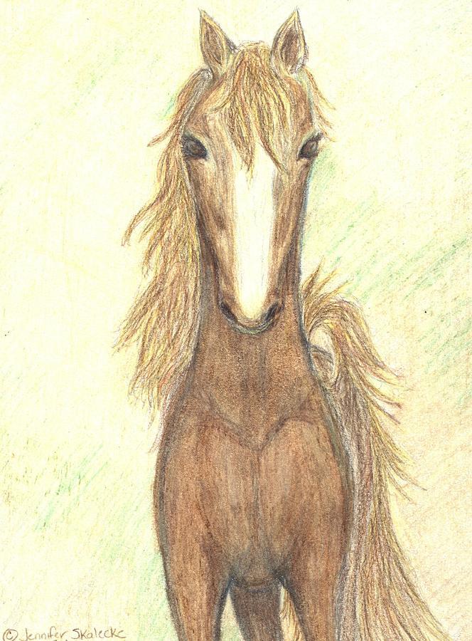 Horse Drawing - Defiant Freedom by Jennifer Skalecke