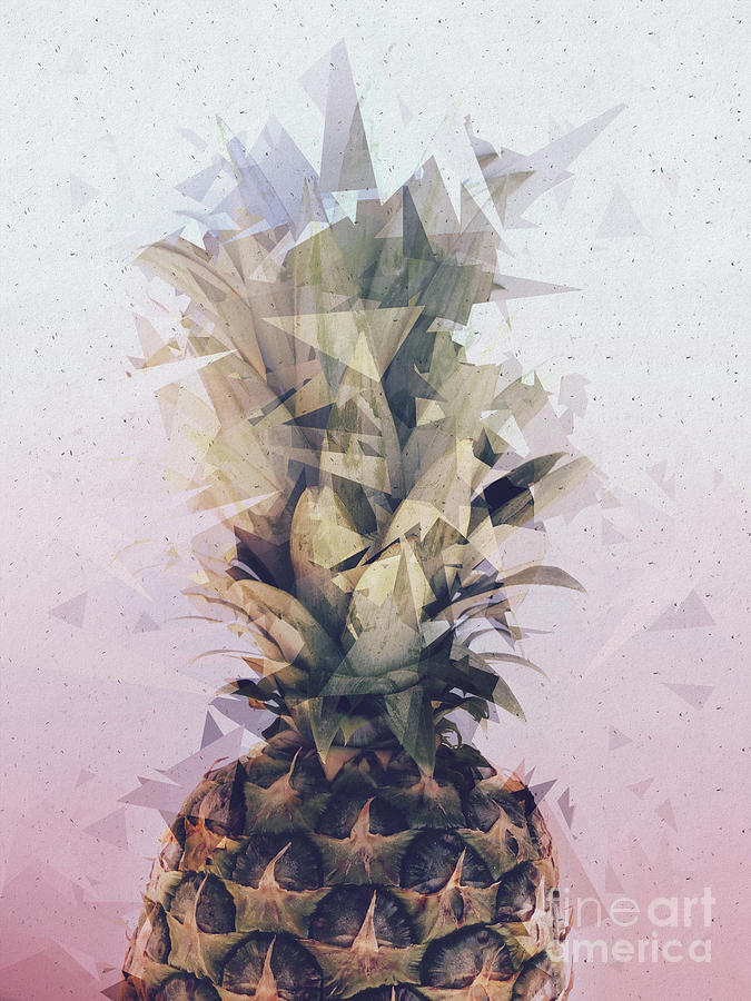 Defragmented Pineapple by EMANUELA CARRATONI