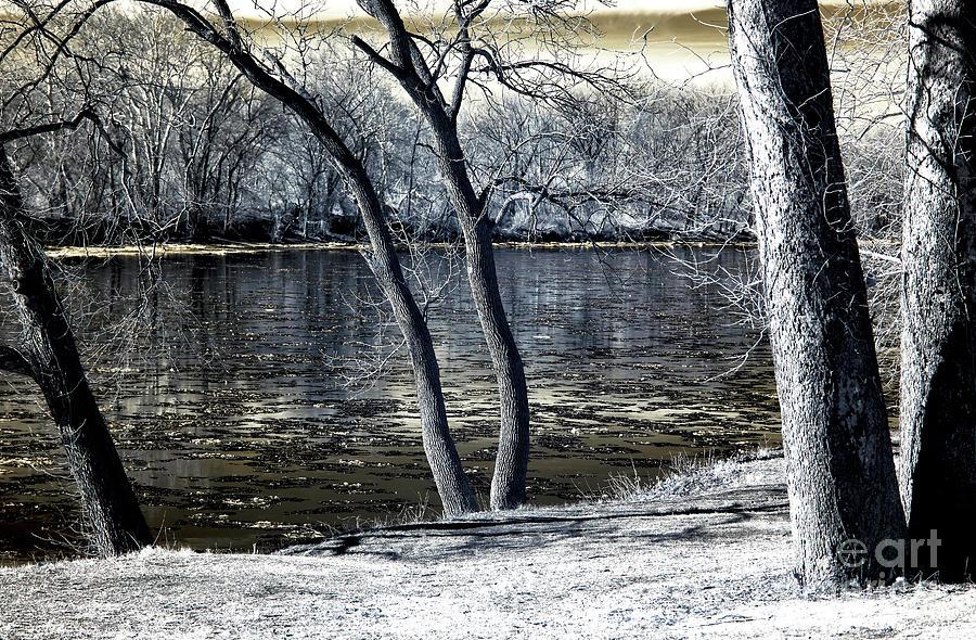 Delaware River Photograph - Delaware River Infrared by John Rizzuto