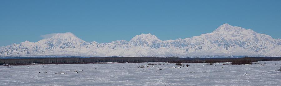 Denali and the Alaska Range by Brenda Smith DVM