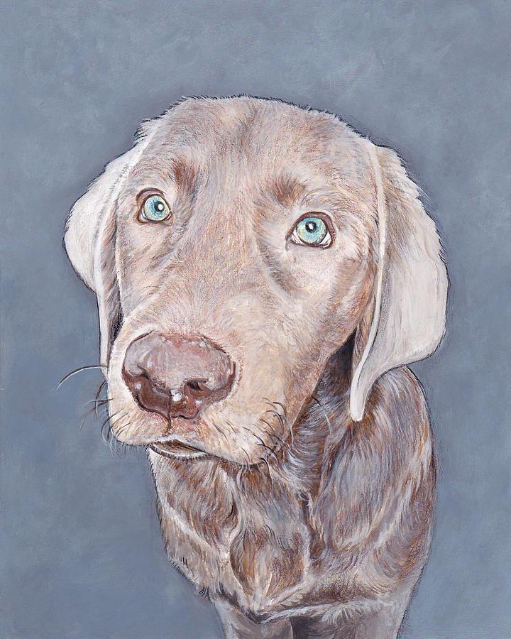 Dog Portraits Painting - Denali by Daniel Carvalho