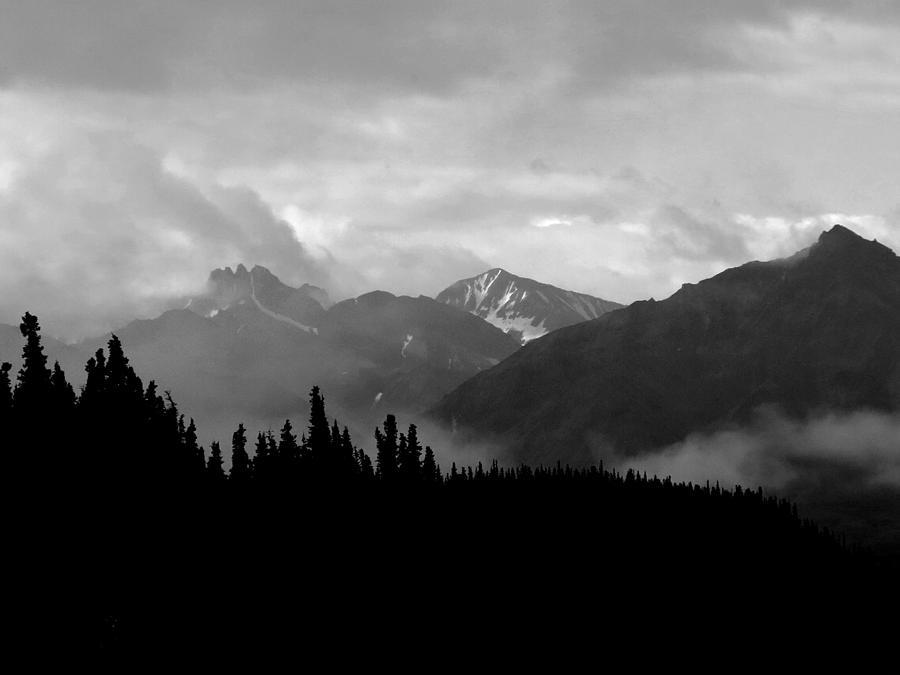 Alaska Photograph - Denali National Park 1  by Dick Goodman