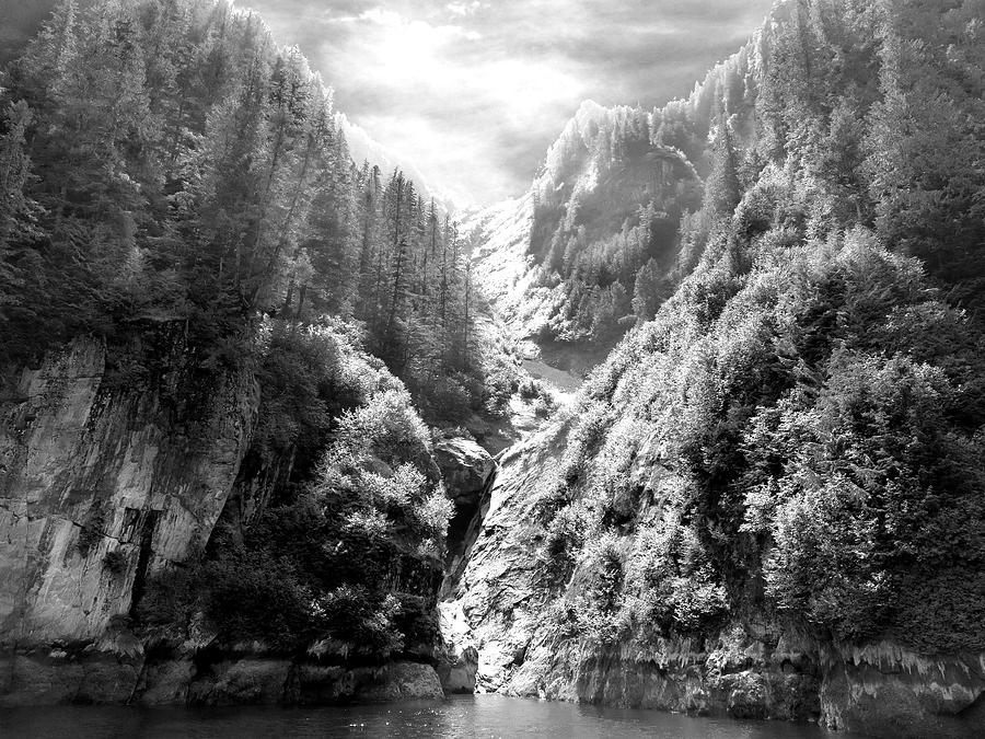 Alaska Photograph - Denali National Park 2 by Dick Goodman
