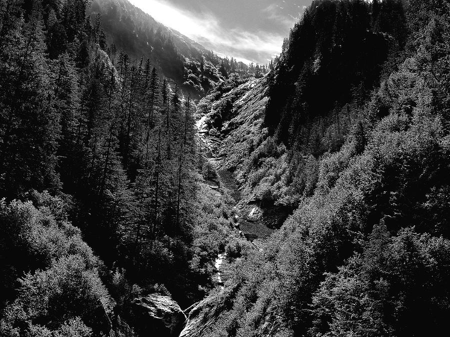 Alaska Photograph - Denali National Park 3 by Dick Goodman