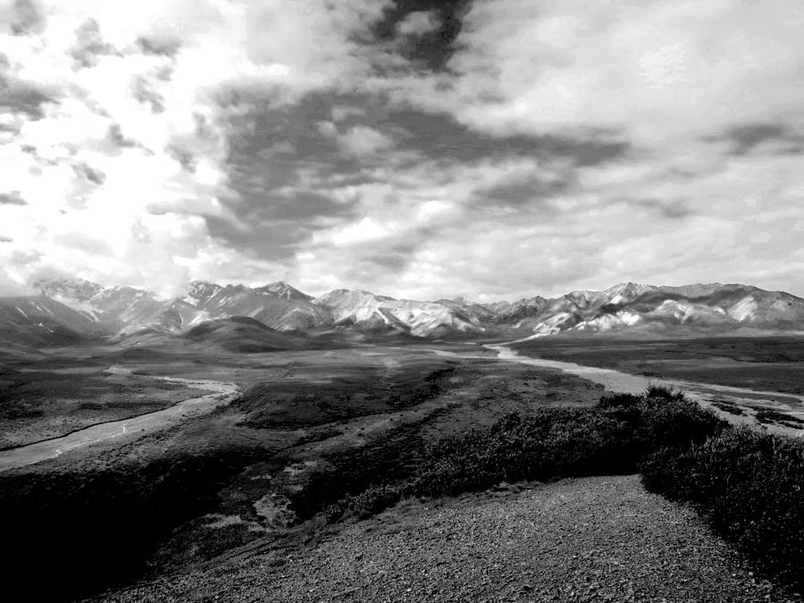 Alaska Photograph - Denali National Park 4 by Dick Goodman