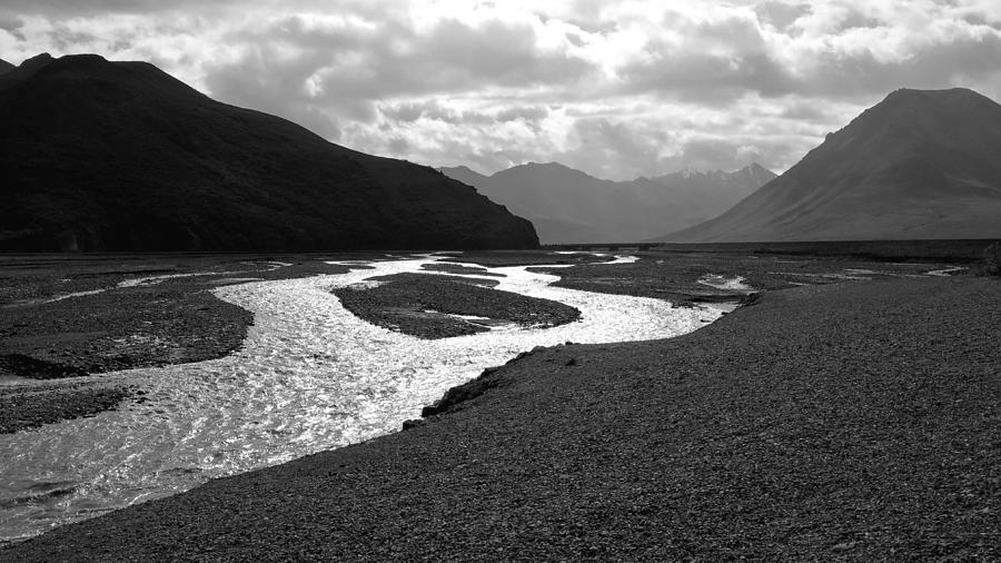 Alaska Photograph - Denali National Park 5 by Dick Goodman