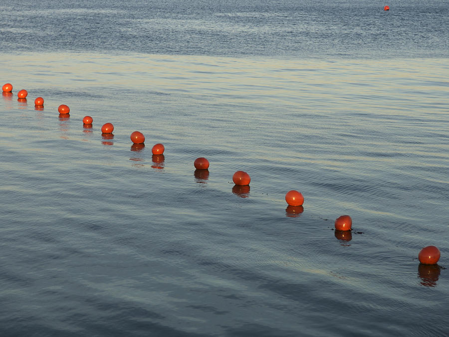 Abstract Photograph - Denmark Red Safety Balls Floating by Keenpress