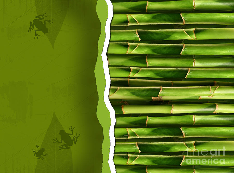 Background Photograph - Dense Bamboo Stalk With Copyspace by Sandra Cunningham
