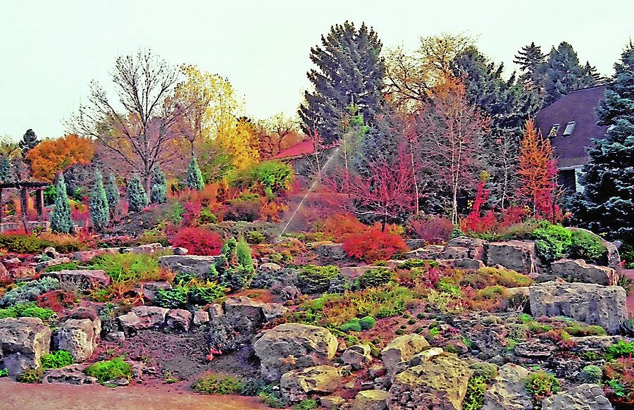 Denver Botanical Gardens 5 Photograph By Steve Ohlsen