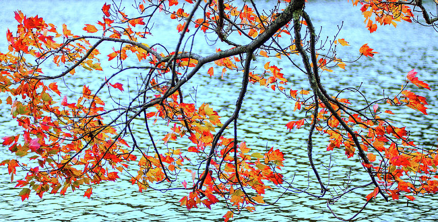 der Oktober by Expressive Landscapes Nature Photography