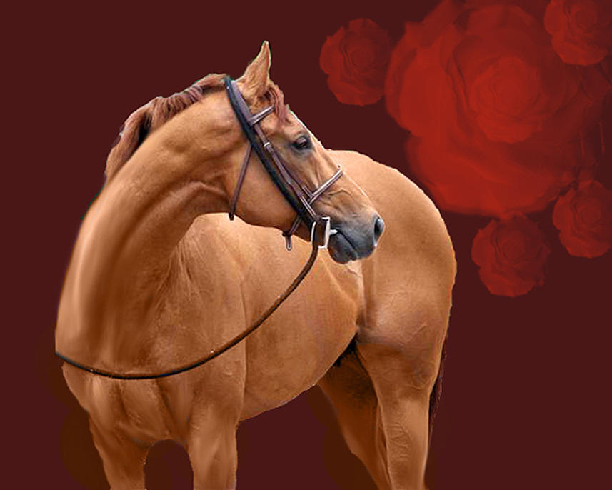 Thoroughbred Painting - Derby Cousin by Kim