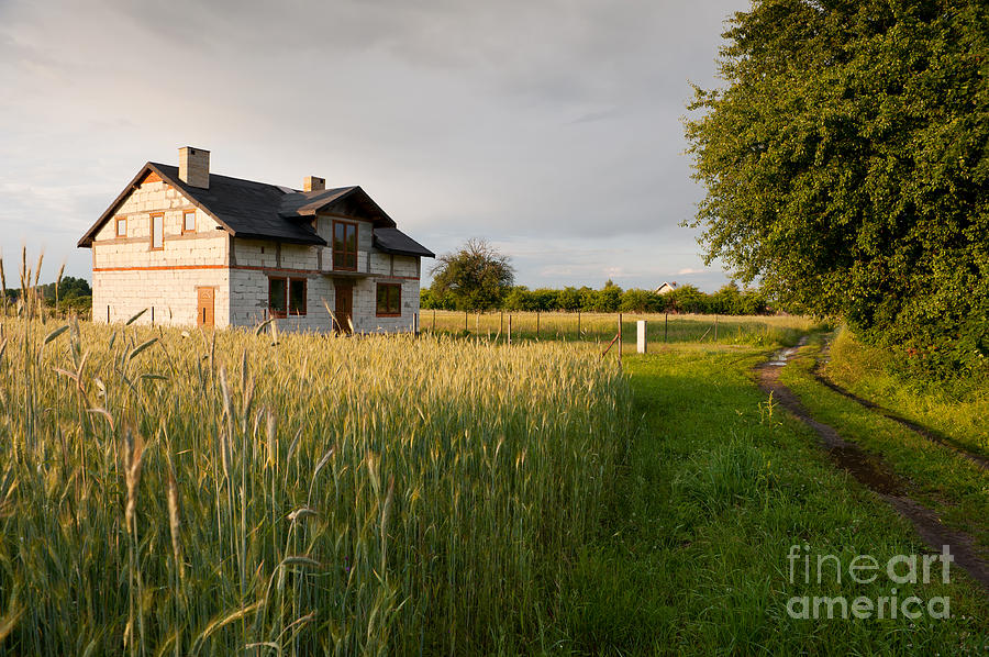 Home Photograph - Derelict Disused House In Field by Arletta Cwalina