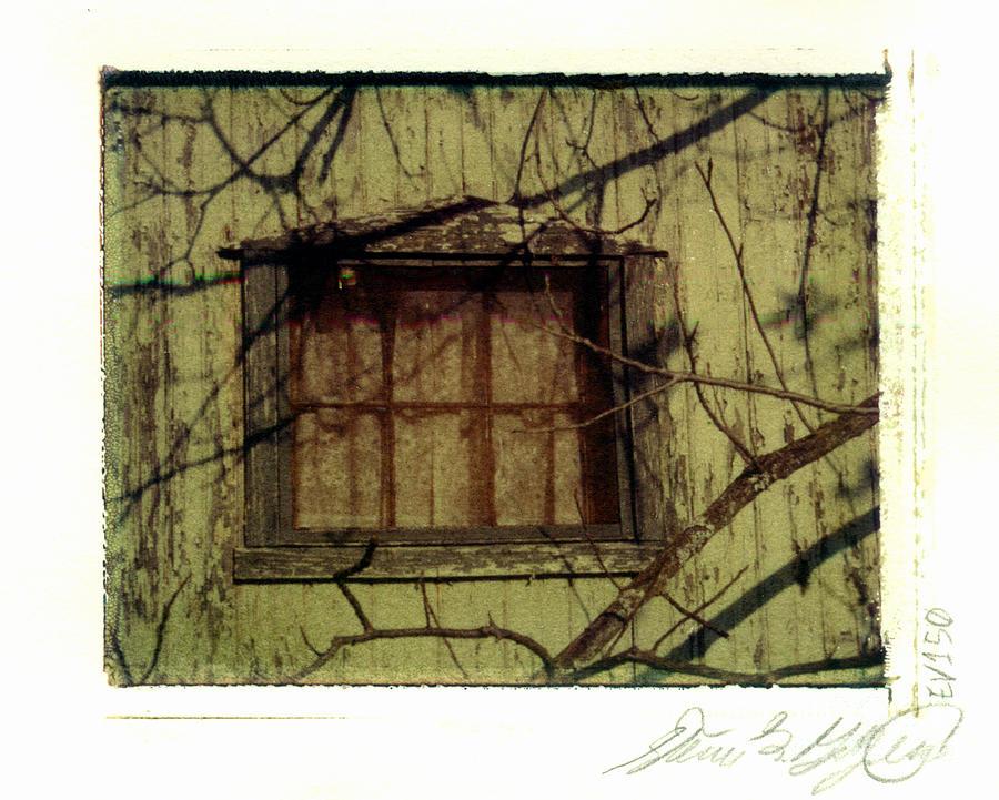 Polaroid Photograph - Derelict Fishing Cottage Window by Steven  Godfrey