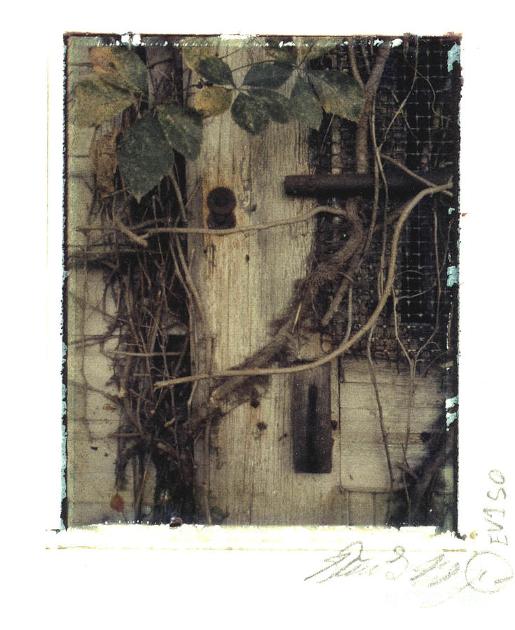 Polaroid Photograph - Derelict Train Station 1 by Steven  Godfrey