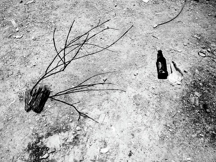 Desert Photograph