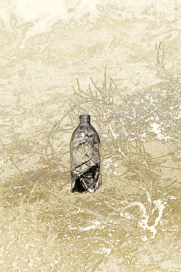 Bones Photograph - Desert Bottle by Karen W Meyer