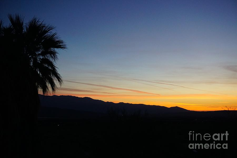 Desert Dawn by Eric Suchman