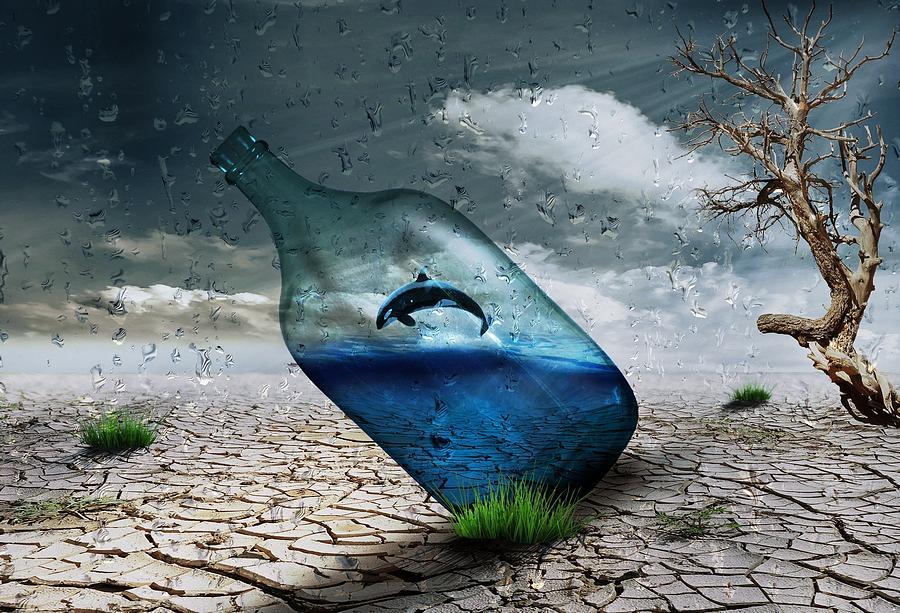 Desert Digital Art - Desert Dolphin Bottle Nature by Lynda Art