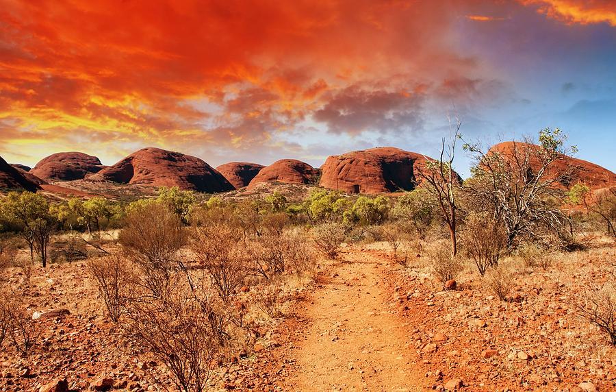Desert Digital Art - Desert by Dorothy Binder
