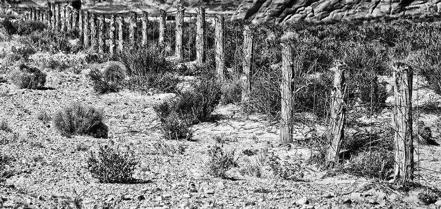Landscape Photograph - Desert Fence by Bob Coates