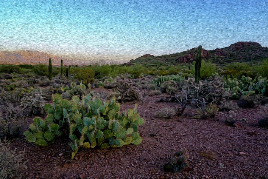 Desert Foothills Op31 Photograph